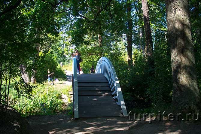 мостик в парке Монрепо