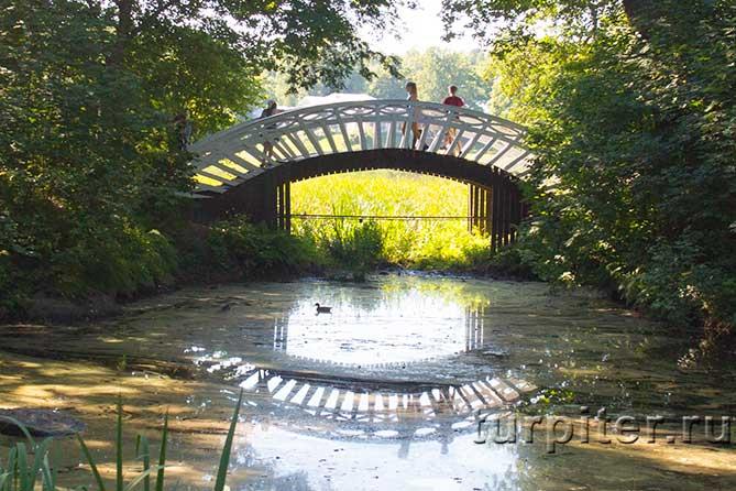 белый мост парк Монрепо
