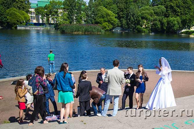 свадьба на берегу пруда