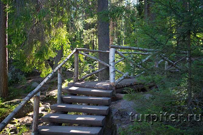 красивые ступенки и мостик из дерева