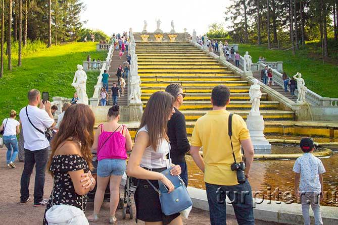 Золотой фонтан Петергоф