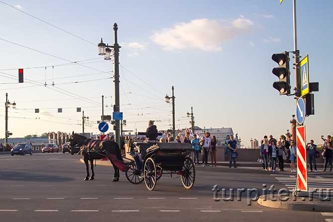 гости в карете едут на Дворцовый мост