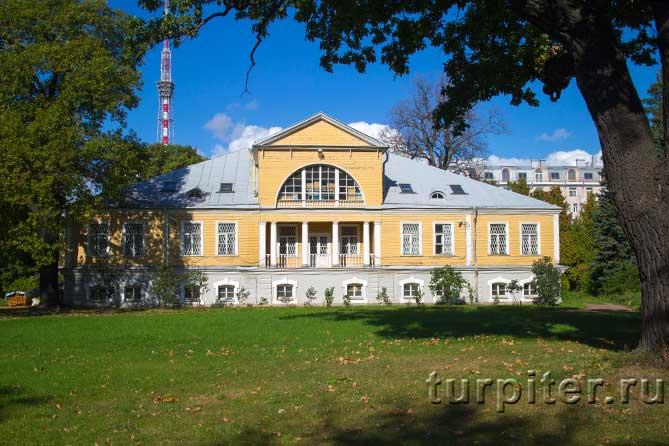 в парке стоит желтый дом