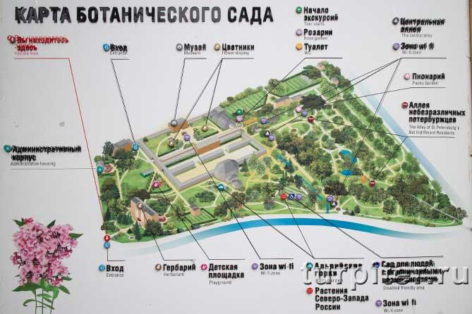 карта Ботанический сад в Питере