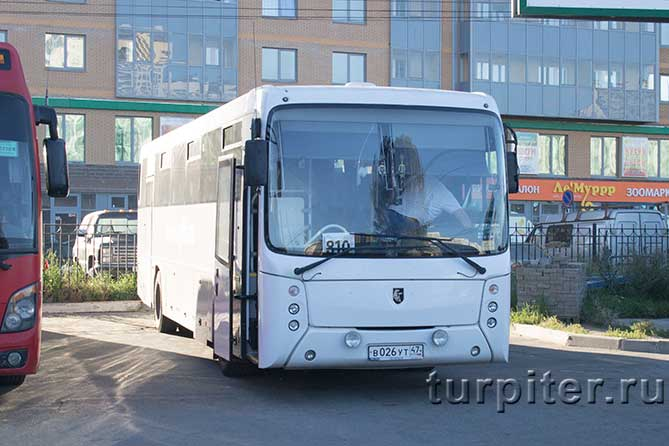 автобус 810 до Святогорска