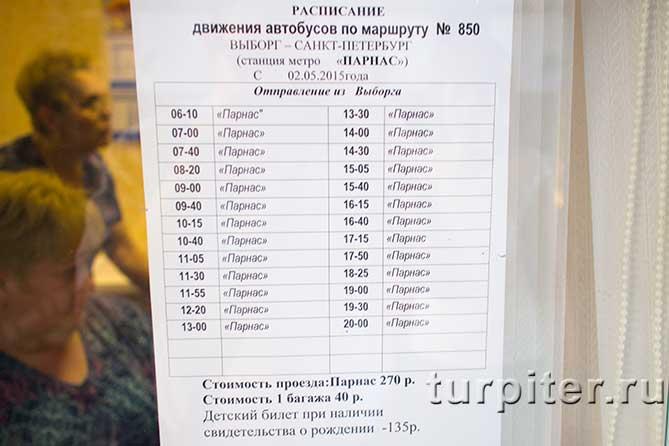 время отправления автобусов до СПБ