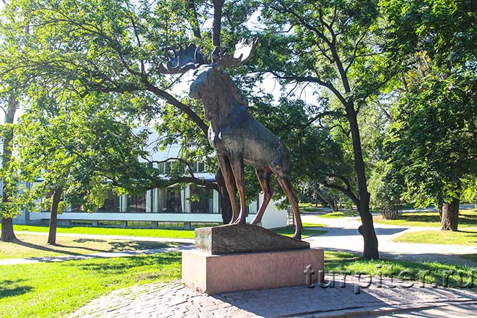 памятник лосю в парке