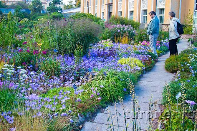 общий вид сад непрерывного цветения
