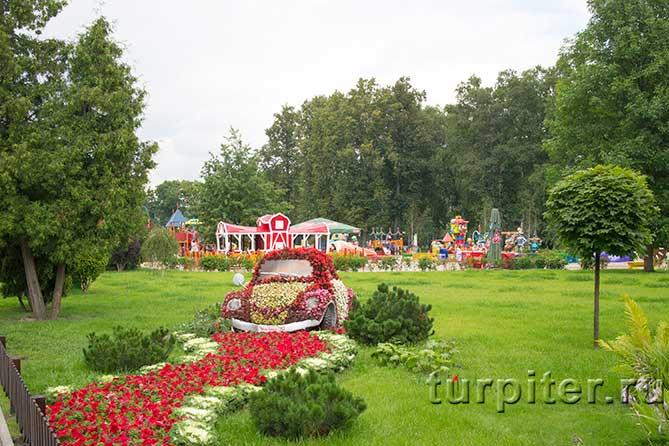 красивый газон и детская площадка
