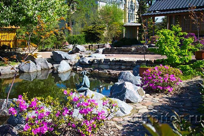 ландшафт японский сад