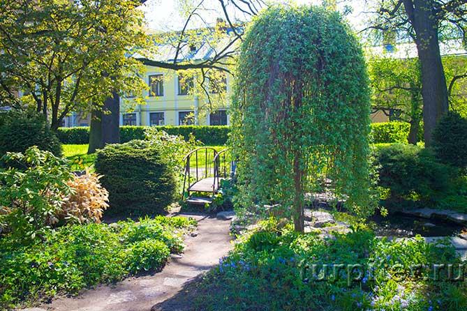 мостик Ботанический Сад
