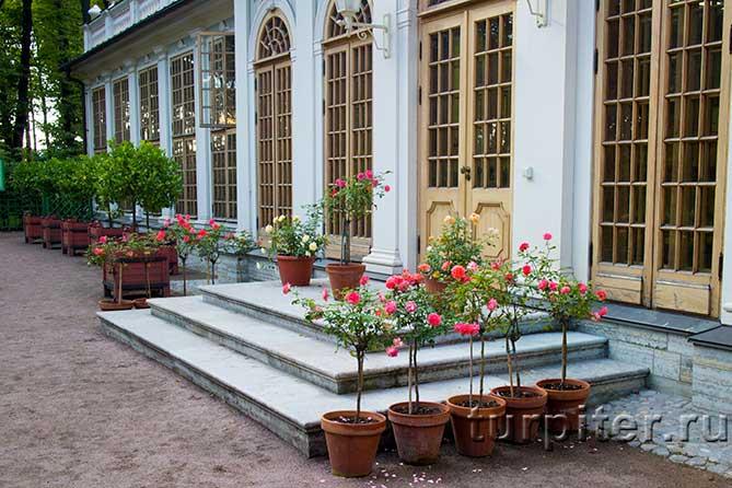 павильон в летнем саду