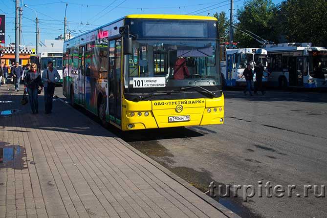 101 автобус в Кронштадт